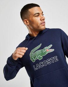 950069fd24 Lacoste Lacoste Sweat à capuche Grand Logo Vintage Homme