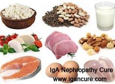 Should Protein Be Limited if Child Has Nephrotic Syndrome http://www.igancure.com/nephrotic-syndrome-healthy-living/Should-Protein-Be-Limited-if-Child-Has-Nephrotic-Syndrome.html