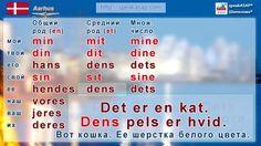 Урок 3. Существительные. Датский язык за 7 уроков для начинающих. Елена ...