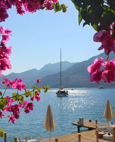 Yacht Boutique Making perfect Holidays Luxury Crewed Yacht Charter Landscape Design, Landscape Architecture, Beautiful Places, Beautiful Pictures, Sailing Holidays, Landscaping With Rocks, Southern Landscaping, Hydrangea Landscaping, Succulent Landscaping