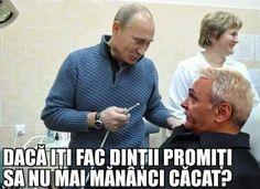 Best Dentist, Vladimir Putin, Life Humor, Lol, Memes, Mens Tops, Poutine, Funny Life, Depressed