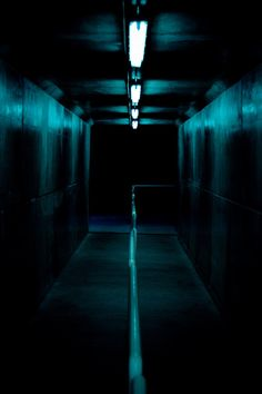 """""""Yeah, this isn't creepy at all,"""" Lexi said drily. As if on cue, one of the overhead lights flickered. Lexi shot a glare at Sarah. """"If I die down here, I'm haunting you."""" """"If you die down here,"""" Sarah said, straining her eyes into the darkness at the end of the tunnel, """"my body will probably be right next to yours."""" """"Was that supposed to be comforting?"""" Lexi asked incredulously. Sarah just shrugged. ~Ash Brownd"""