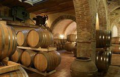 Wine cellar at Fattoria del Colle