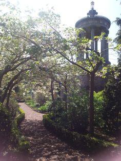 Robert Burns Birthplace Museum gardens - cherry blossom archway