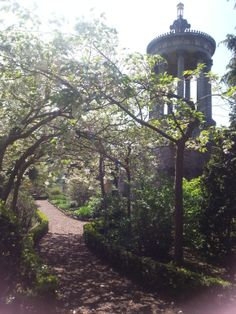 Robert Burns Birthplace Museum gardens - cherry blossom archway