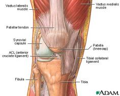 = Simple Fix for Knee Pain
