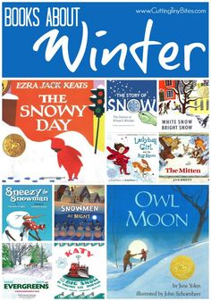 Books About Winter.  Children's Book List with brief reviews of each.  Snow, snowmen, animals in winter, cold weather, and more!