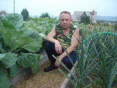 Un agricultor foarte talentat... Mi-a placut metoda sa - Pentru Ea Home Vegetable Garden, Growing Vegetables, Koi, Garden Design, Plants, Vegetable Garden, Farmer, Vegetable Recipes, Country