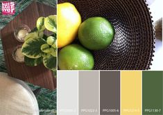 Popping green and yellow colour board for your interior. For more information on the colours, contact us