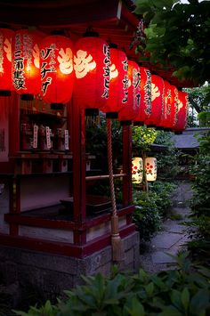 Chochins (Japanese paper lanterns) at a temple in Kyoto. Kyushu, Japanese Culture, Japanese Art, Japanese Interior, Japanese Style, Japanese Aesthetic, Geisha, Asia Travel, Japan Travel