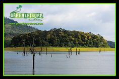 #BoatCruise in #PeriyarLake is an amazing experience  It gives the panoramic view of the   landscape beauty of #PeriyarTigerReserve   http://www.greenleisuretours.com/kerala-sightseeing/Thekkady  Reach us GreenLeisure Tours & Holidays for any #Kerala #Tour #Packages www.greenleisuretours.com  Like us & Reach us https://www.facebook.com/GreenLeisureTours for more updates on #Kerala #Tourism #Leisure #Destinations #SiteSeeing #Travel #Honeymoon #Packages #Weekend #Adventure #Hideout
