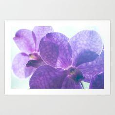 Orchid Vanda 82 Art Print by metamorphosa - $22.88