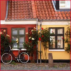 (2011) Ribe, Denmark.  (All Rights Reserved).
