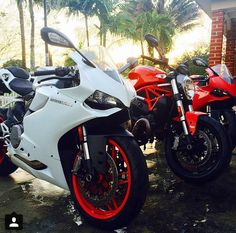 Ducati 899 panigale and monster
