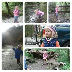 Woodland walks in all weather's