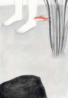 Il pesce rosso - tav. 2