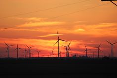 Country Sunset with Windmills near Dwight IL