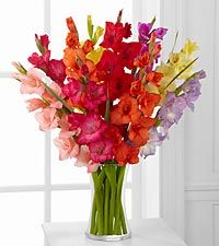Look to the Rainbow Gladiolus Bouquet - 10 Stems with Vase
