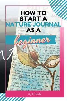 Starting a nature journal has a whole range of benefits from better concentrating to more creativity. But where do you even start? Check out these beginner's tips on nature journalling and start yours today.