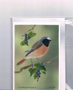 Grüße - Grußkarte - Gartenrotschwanz, handgemalt - ein Designerstück von Vogelmalerin bei DaWanda