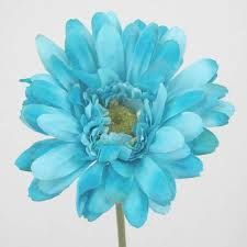 turquoise flowers - Google Search