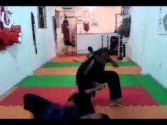 Hapkido -  Movimentos Básicos - Defesa pessoal (Hanshinsul)