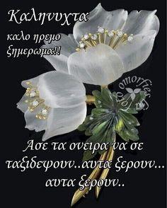 Night, Plants, Angels, Angel, Plant, Planets, Angelfish