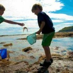 Crabbing with the kids - Kate & Tom's British Holidays, Holiday Essentials, Largest Countries, Great British, Fresh Water, Country, Kids, Young Children