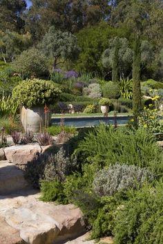 Santa Ynez Valley Mediterranean landscape Hillside Garden, Dry Garden, Garden Landscape Design, Garden Landscaping, Mediterranean Garden Design, Mediterranean Style, Beautiful Landscapes, Beautiful Gardens, Provence Garden