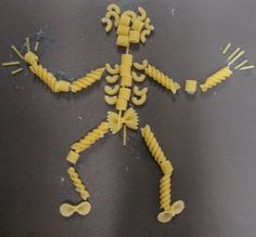 The human body unit. They made their skeletal system with pasta. The human body unit. They made their skeletal system with pasta. The human - 4th Grade Science, Teaching Science, School Projects, Projects To Try, Pasta Crafts, Human Body Unit, Skeletal System, Kindergarten Art, Teacher Tools