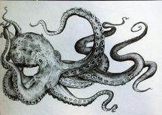 Bildergebnis für simple pen drawings of octopus Octopus Tentacles Drawing, Octopus Painting, Octopus Art, Painting & Drawing, Squid Drawing, Drawing Drawing, Octopus Legs, Octopus Tattoo Design, Octopus Tattoos
