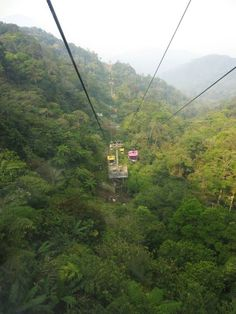 Cable Car in the Jungle, Genting, Malaysia Copyright: Laetitia Buczaczer