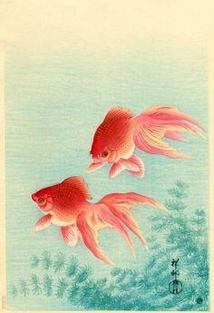 Ohara Koson Gold Fish Japanese Woodblock Print Vintage Historical Japanese Art Art Print by Tokugawa - X-Small Ohara Koson, Art Asiatique, Tinta China, Art Japonais, Illustration Art, Illustrations, Japanese Embroidery, Japanese Painting, Japanese Prints