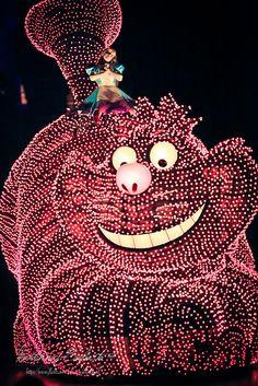 Tokyo Disneyland ~ Electrical Parade