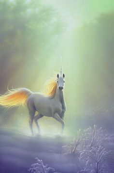 Unicorn, a Beautiful Horse-Like Creature With a Magical Horn on its Head