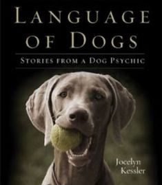 The Secret Language Of Dogs: Stories From A Dog Psychic PDF