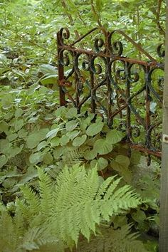 Rusted Garden Gate