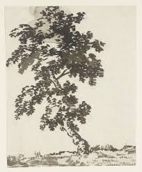 alexander cozens - Google Search Tree Pencil Sketch, Notan Art, Nature Drawing, Drawing Trees, Drawing Sketches, Drawings, Sketching, Tree Study, Tate Gallery
