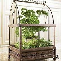 arched wardian case terrarium.  #terrarium #miniatures #wardian
