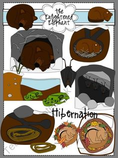 Hibernation Clip Art product from The-Enlightened-Elephant on TeachersNotebook.com