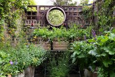 A small space with lots of greenery