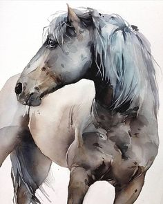 Creative Drawing – 75 Picture Ideas – Drawing Ideas and Tutorials Watercolor Horse, Watercolor Animals, Watercolor Sketch, Watercolour Painting, Watercolours, Horse Drawings, Animal Drawings, Horse Nursery, Nursery Decor