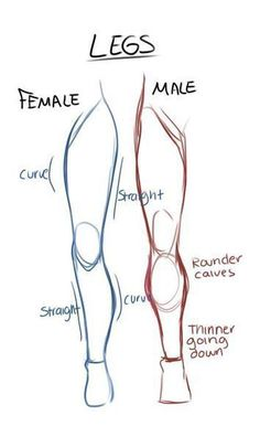 Learn To Draw Male and female leg anatomy drawing reference Viria, Pencil Art Drawings, Art Drawings Sketches, Eye Drawings, Illustration Sketches, Hand Drawings, Art Illustrations, Fashion Illustrations, Drawings Of Men