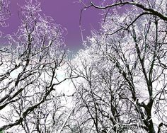 Holiday Decor Whimsical Purple Winter Home by Maddenphotography, $15.00