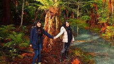 Redwood Forest, Rotorua - get closer to nature