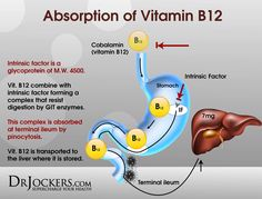 http://www.rawfoodexplained.com/why-we-should-not-eat-meat/the-facts-about-vitamin-b12.html