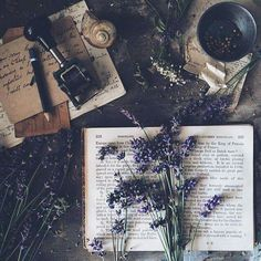 Herb Book of Shadows Witch Aesthetic, Book Aesthetic, Aesthetic Photo, Aesthetic Pictures, Photography Aesthetic, Aesthetic Grunge, Aesthetic Vintage, Aesthetic Anime, Photos Amoureux