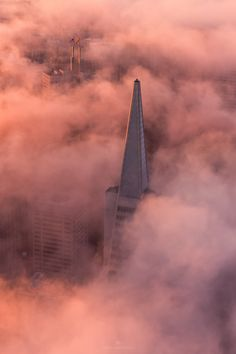 Peaking Through by Toby Harriman on 500px - http://planetunicorn.co/portfolio-item/a-typical-san-francisco-morning/