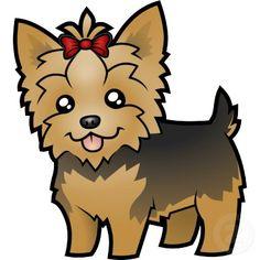yorkshire terrier short hair - Google Search opawz.com  supply pet hair dye,pet hair chalk,pet perfume,pet shampoo,spa....