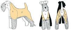 Grooming sections - jacket Fox Terriers, Wirehaired Fox Terrier, Welsh Terrier, Wire Fox Terrier, Airedale Terrier, Dog Grooming Styles, Dog Grooming Salons, Schnauzer Grooming, Dog Grooming Tips